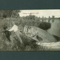 Gag Postcard, Fishing in Conesus Lake